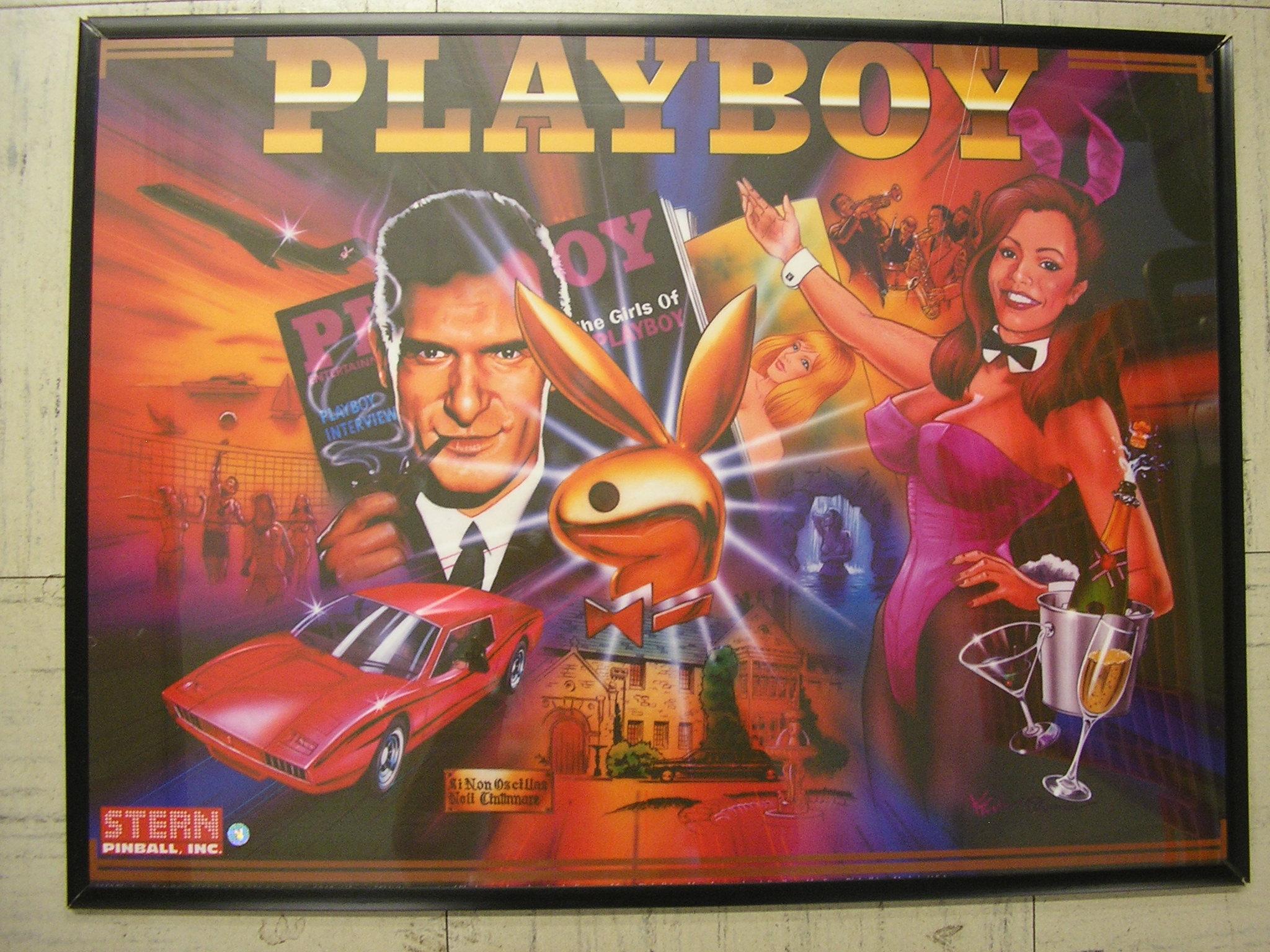 Playboy Pinball Stern Billiards N More